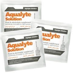 Aqualyte Solution Fluid & Electrolyte Supplement  - Orange 80g