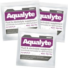 Aqualyte Solution Fluid & Electrolyte Supplement  - Berry 80g