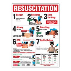 Brady Resuscitation Chart Full Colour, 600mm x 450mm