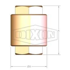 Dixon Check Valve Spring-Loaded Inline York 25mm Plastic Stem
