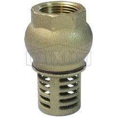 Dixon Brass Foot Valve BSP 50mm